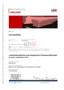 chWfuerSandmannCraniosacral32020Sauerbier